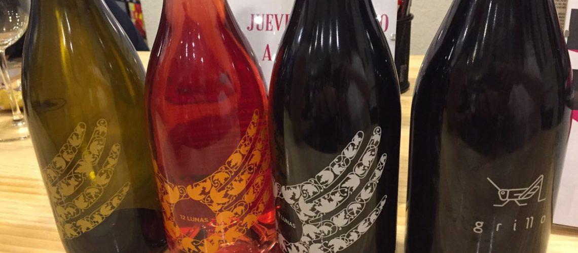 Cata vinos Alcorcón